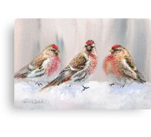Red Birds in A Row In The Snow - Winter Red Poll Painting Canvas Print