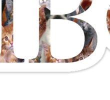 Pi Phi Kitties Sticker