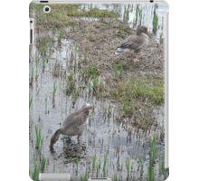Greylag Geese iPad Case/Skin