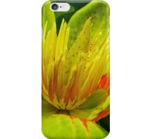 The Tulip Tree Flower iPhone Case/Skin