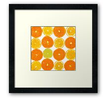 Oranges & Lemons Framed Print