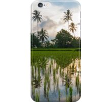 Green rice fields on Bali island, Jatiluwih near Ubud iPhone Case/Skin