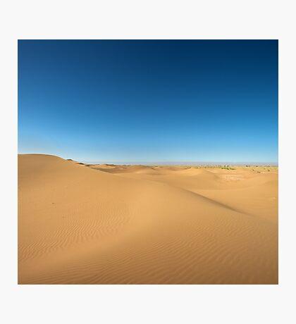 Majestic dune landscape Photographic Print