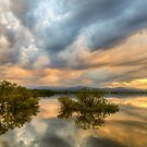 Reflections Of A Thunderstorm by Bo Insogna
