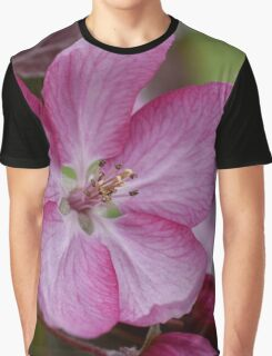 pink apple tree blossoms Graphic T-Shirt