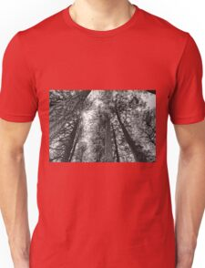 from the forest floor Unisex T-Shirt