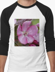 pink apple tree blossoms Men's Baseball ¾ T-Shirt