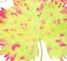 Watercolor Leaf Sticker
