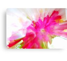 Explosion of Pink Canvas Print