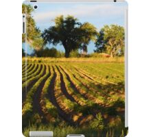 Rows  iPad Case/Skin