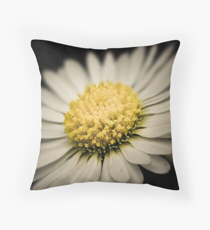 Another Daisy Day Throw Pillow
