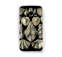 Golden Shells Samsung Galaxy Case/Skin