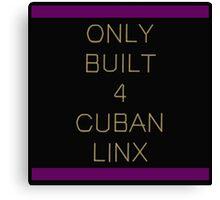 Only Built 4 Cuban Linx Canvas Print