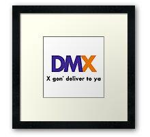 X gon' deliver to ya Framed Print