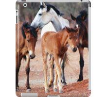 Wild Brumbies of the Mereenie iPad Case/Skin