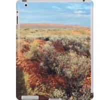 King's Creek Station iPad Case/Skin