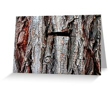 Weeping Willow Tree Bark Greeting Card