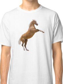 Silver Bay Stallion Classic T-Shirt