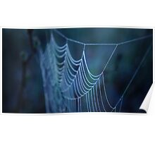Dew Covered Spider Web Macro Poster
