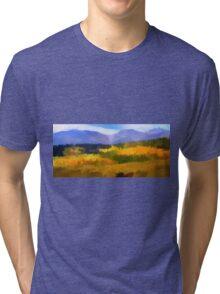 Carpet of Fall Color  Tri-blend T-Shirt