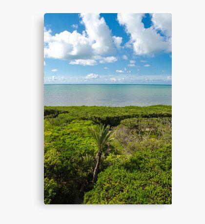 See The Sea Canvas Print