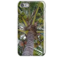Lovely Bunch O' Coconuts  iPhone Case/Skin