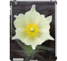 Spring flower iPad Case/Skin