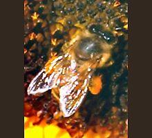 Bee up close Unisex T-Shirt