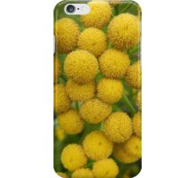 Yellow Puff Flowers iPhone Case/Skin
