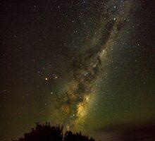 Ngunguru Night Sky by Cornelia Schulz