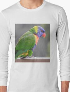Rainbow Lorikeet Long Sleeve T-Shirt
