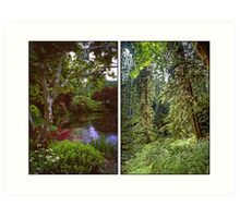 VANCOUVER ISLAND DIPTYCH Art Print