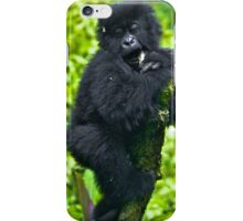 Playful Primate iPhone Case/Skin