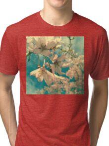 Kindergarten Sky Tri-blend T-Shirt