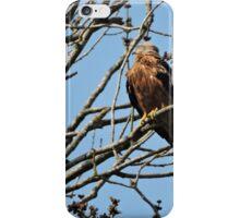 Milvus Milvus iPhone Case/Skin