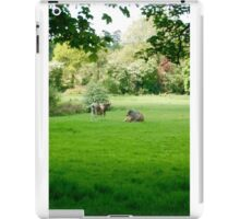 Barely Mooving, The Pair iPad Case/Skin