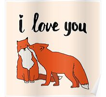 Foxes in Love Poster