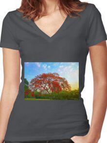 Gulmohar  Women's Fitted V-Neck T-Shirt