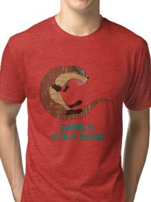 Swimming is Otter-ly Awesome! Tri-blend T-Shirt