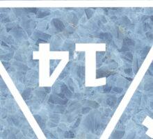 D20 Blue Marble Sticker