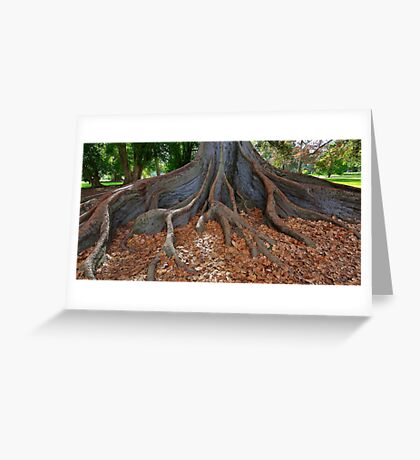 Standing firm Greeting Card