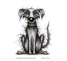 Mr Smelly the smelly dog Photographic Print