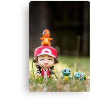 Red and the Starters Canvas Print