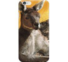 Happy Resting Kanga iPhone Case/Skin