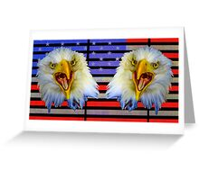 Double Screaming Eagle head on Stars and Stripes Greeting Card