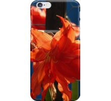 flower and colors - flor y colores iPhone Case/Skin
