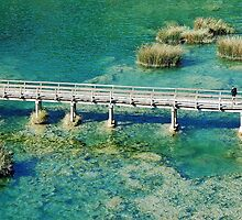 Krka river - Sibenik - Croatia by Arie Koene
