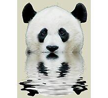 Water panda Photographic Print