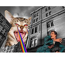 THE CAT STRIKES BACK Photographic Print