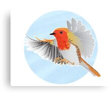 A Beautiful British Robin Canvas Print